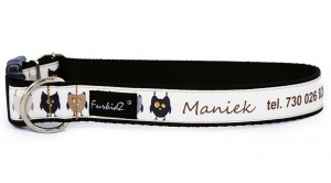Dog's Collar with name 'Design' Owls