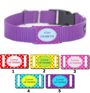 Dog's Collar with name Dots